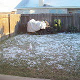 Snow Day - 101_5991.JPG