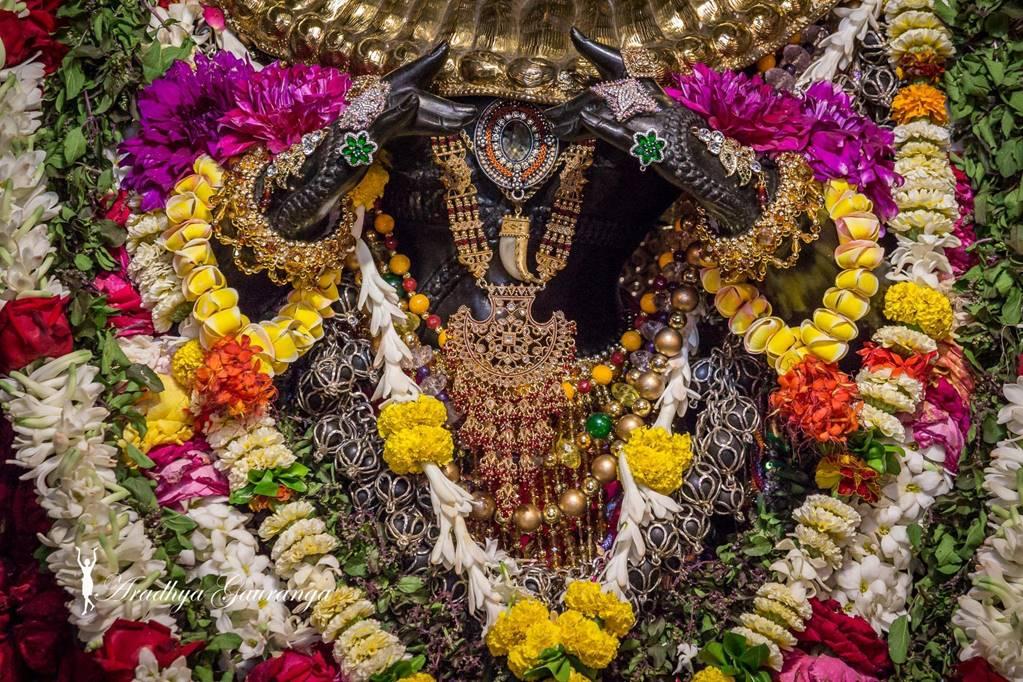ISKCON Mayapur Deity Darshan 01 Mar 2016 (12)