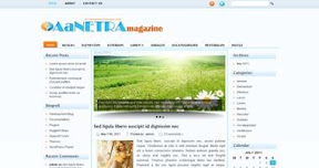 Free Wordpress Theme - Aanetra