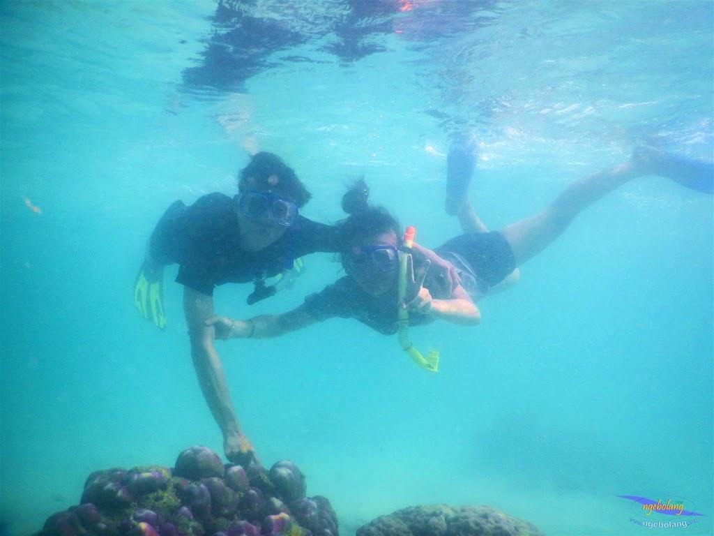 pulau pari, 23-24 mei 2015 33