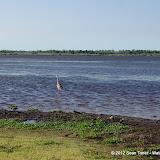 04-06-12 Myaka River State Park - IMGP9904.JPG