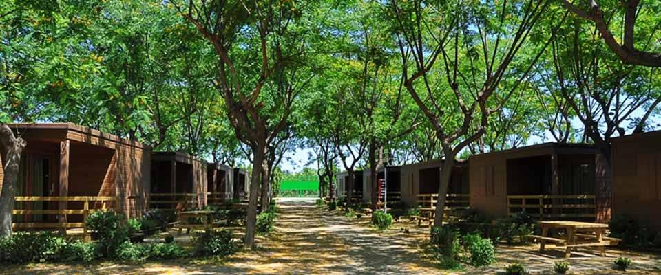 Camping & Bungalow Àmfora d'Arcs