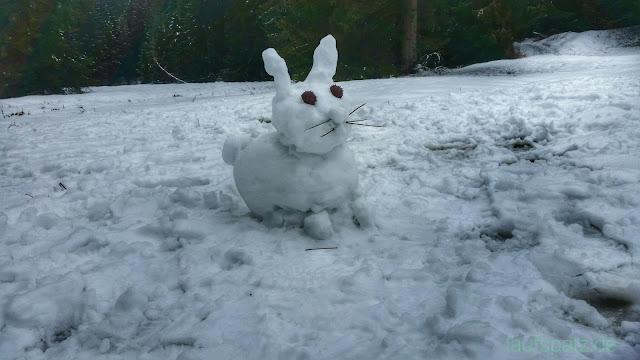 putziger Schneehase