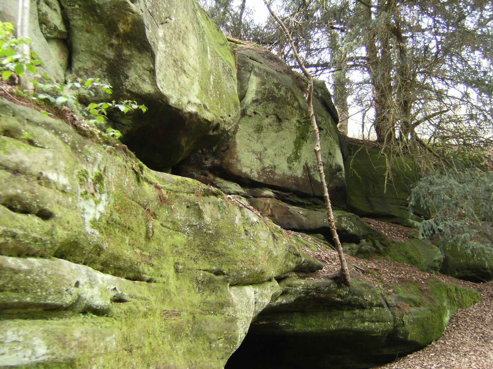 DSCF7083 Eridge Rocks
