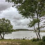 20180622_Netherlands_Olia_036.jpg