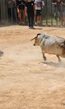 016-peña taurina linares 2014 042.JPG