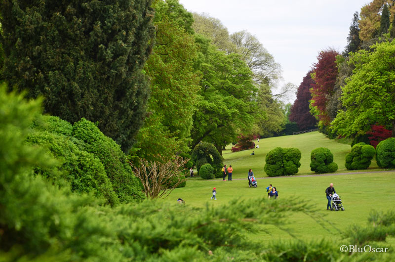 Parco Giardino Sigurtà 17