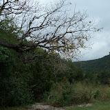 Fall Vacation 2012 - 115_3901.JPG