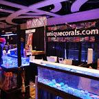 2010 MACNA XXII - Orlando - DSC01643.jpg