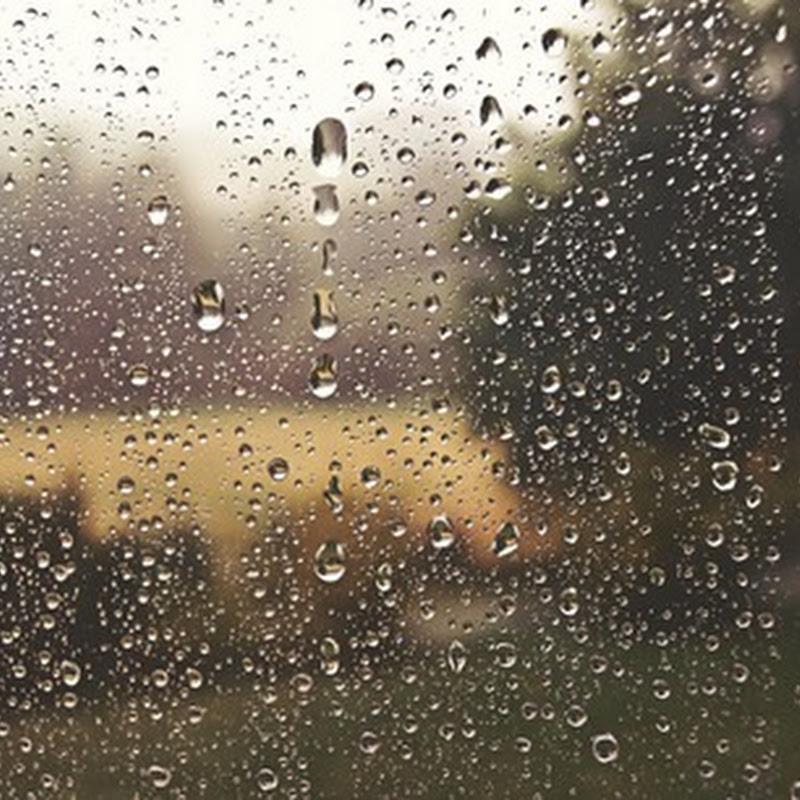 [Stories] Trời bắt đầu mưa và ngôi nhà đã làm điều gì giúp bạn?