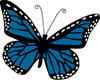 blue-butterfly-clipart-png_230-185