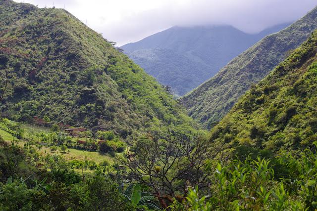 La Vallée du Rio Guallupe près d'El Limonal (Imbabura, Équateur), 2 décembre 2013. Photo : J.-M. Gayman