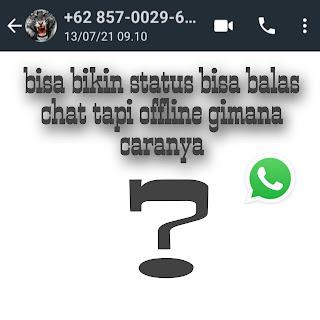 Ilustrasi WhatsApp terlihat offline