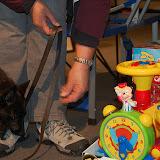 KNON pups in de stad 09-2011 - DSC_0059.JPG
