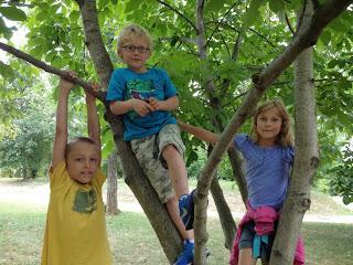 kinderen op park 003