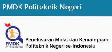 pmdk pn