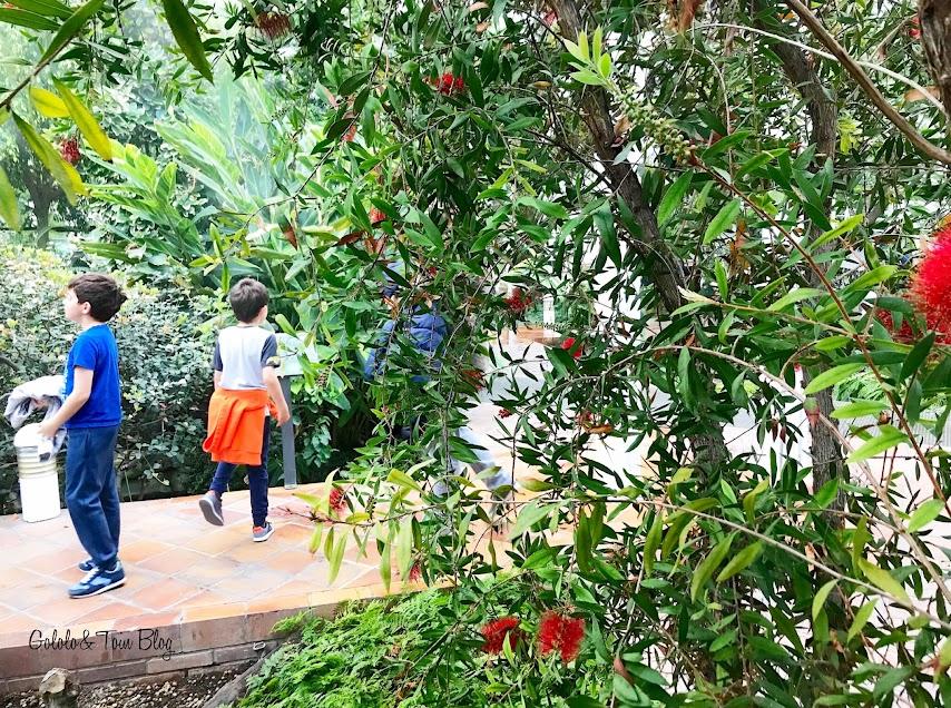Ocio con niños en Madrid invernadero de la Arganzuela Matadero