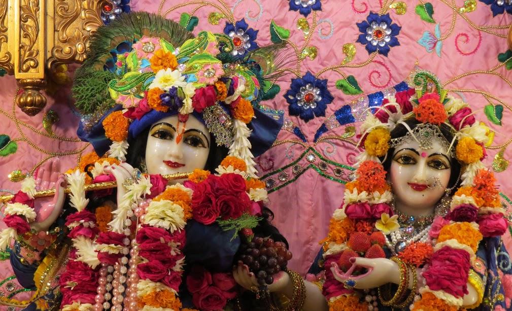 ISKCON Vallabh vidhyanagar Deity Darshan 17 jan 2017 (3)