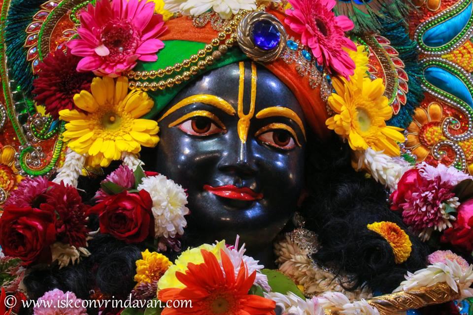 ISKCON Vrindavan Deity Darshan 03 jan 2017 (15)