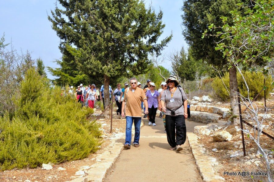 Национальный парк Адмит. Экскурсия по Западной Галилее. Гид в Израиле Светлана Фиалкова.