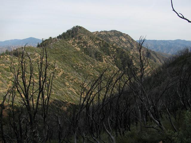 Madulce Peak
