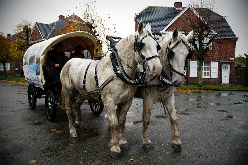 Sint in Daknam 2011 DSC_5930.jpg