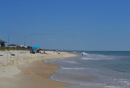 This was the busy area of the beach!