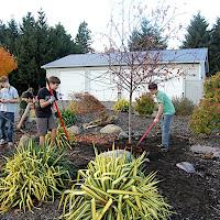 Tree Planting November 2010 - DSC_4550.JPG