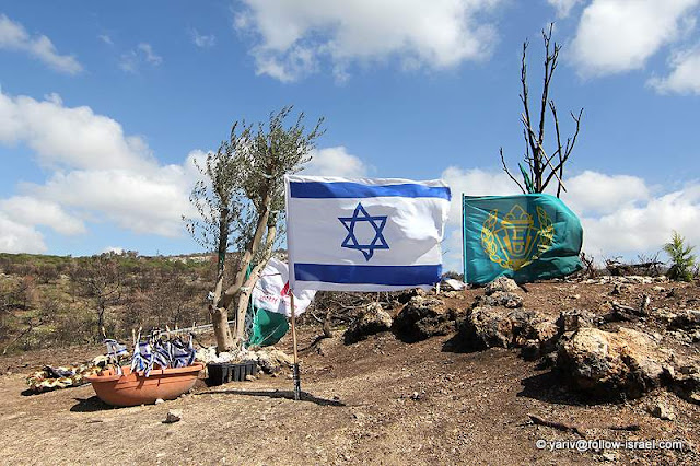 ישראל בתמונות - הר הכרמל לאחר השריפה