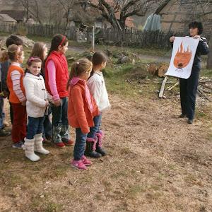 Activitati_prevenire 09_26.11,2012