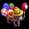 festival of ballons1