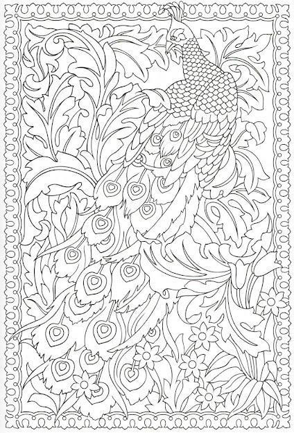 Highly Detailed Doodle Of Peacock Coloring Page For Adults