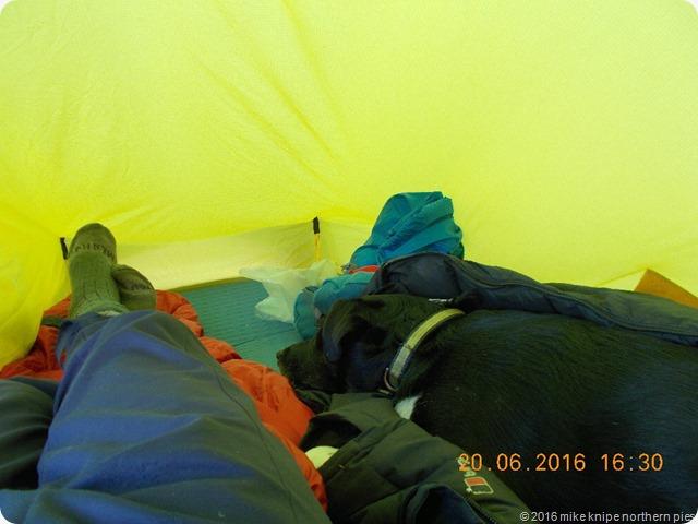 solstice camp 004