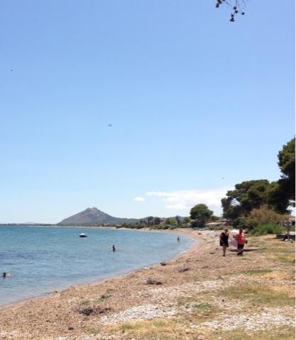 Dogs Beach Port De Pollenca