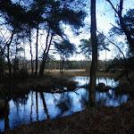021-Nieuwjaarswandeling met de Bevers.Menno gidst ons door het mooie natuurgebied De Regte Heide te Go+»rle