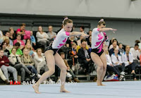 Han Balk Fantastic Gymnastics 2015-9602.jpg
