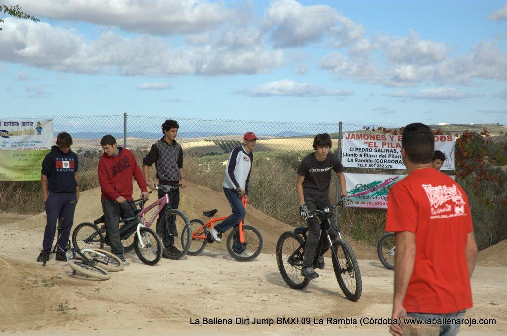 Ballena Dirt Jump BMX 2009 - BMX_09_0002.jpg