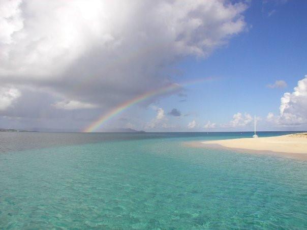 Buck Island Reef - rainbow%2Bbuck.jpg