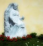 Inaugurazione della nuova statua di S. Luigi Guanella.