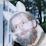 Rob Meades's profile photo