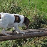 Survival voor Baas en Hond 2012 - DSC_0281.JPG