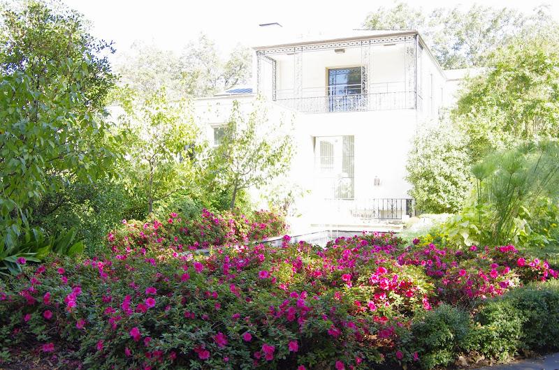 10-26-14 Dallas Arboretum - _IGP4289.JPG