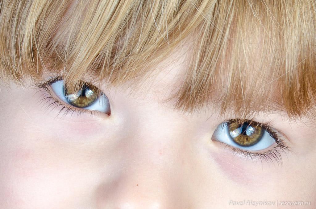 Катюшины глазки