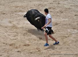 044-peña taurina linares 2014 129.JPG