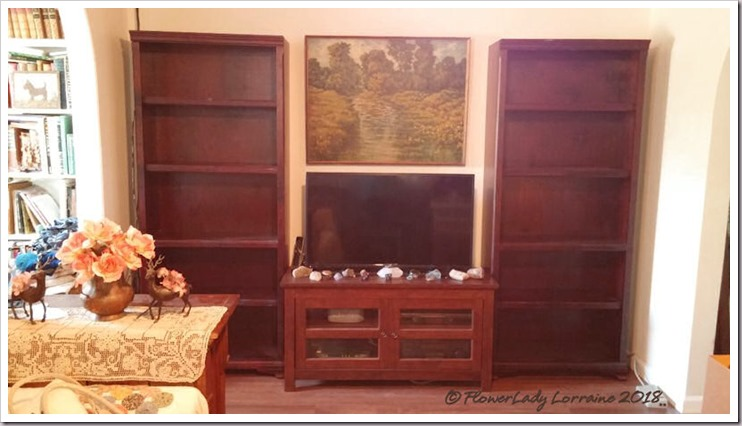 10-25-bookcases