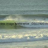 _DSC7423.thumb.jpg