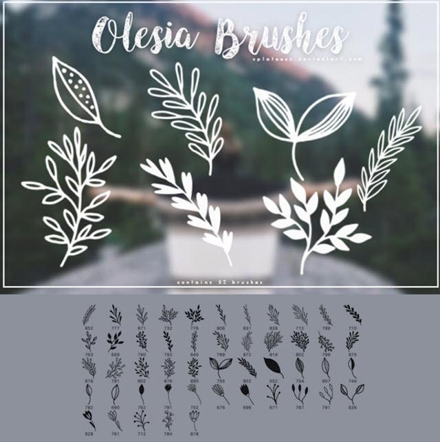 piante-pennelli