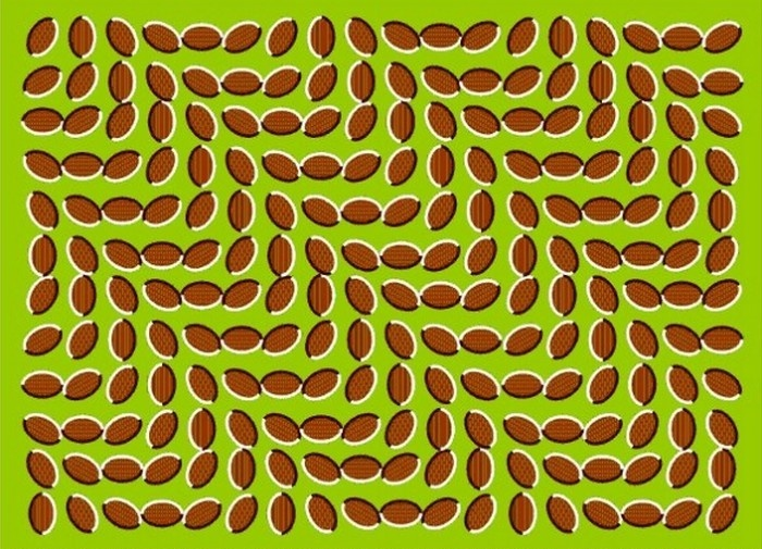 Optical Illusion : Moving Objects