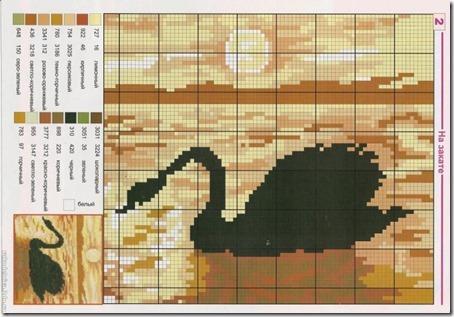 cisne negro punto de cruz3