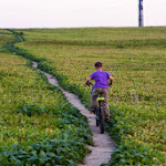 20140830_Fishing_Shpaniv_043.jpg